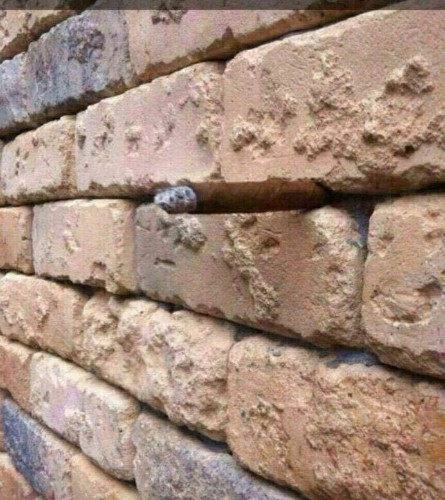 Brick Wall Optical Illusion Stumps Thousands of Internet Users