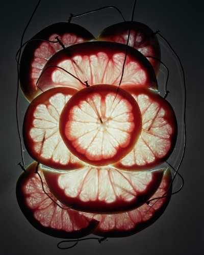 Artistic Scientist Generates Electricity from Different Foods