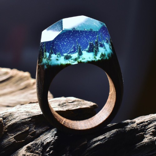 Exquisite Wooden Rings Reveal Miniature Landscapes Encapsulated in Resin