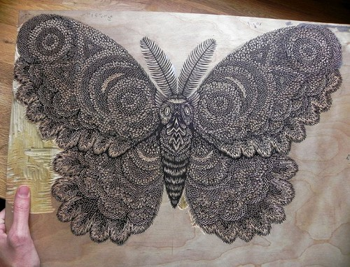 Meticulous Hand-Carved Wood Print of a Giant Moth