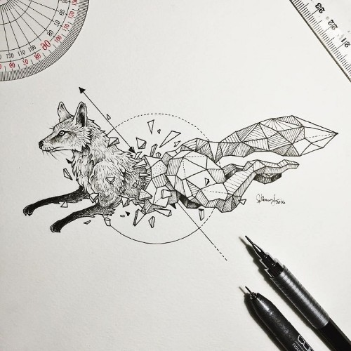 Wild Animal Illustrations Burst Out of Geometric Encasings