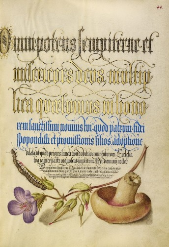 16th-Century Calligraphy Manual Available for Free Download