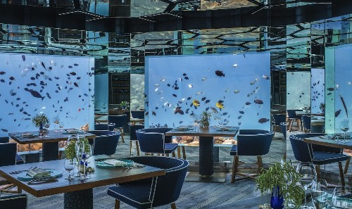 Immersive Underwater Restaurant Invites You to Dine Next to Spectacular Marine Life