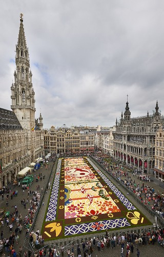 "600,000 Flowers Used to Create Colorful ""Carpet"" Stretching Across 1,800 Square Meters"