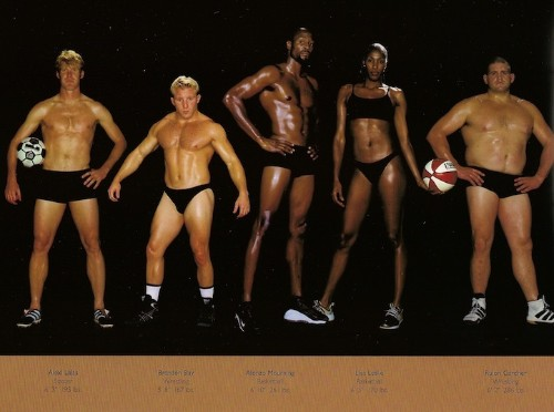 Comparing Vastly Different Body Types of Olympic Athletes