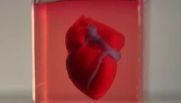 World's First 3D-Printed Heart Could Revolutionize Organ Transplants