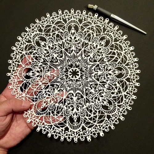 Intricately Detailed Papercut Designs Reflect Beauty of the Natural World