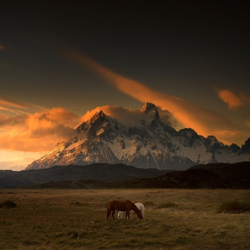 Breathtaking Photos Celebrate the Wild Beauty of Patagonia's Untouched Landscapes