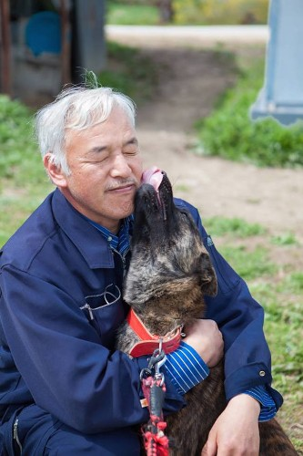 The Selfless Hero Who Braved Radiation and Stayed Behind to Feed Fukushima's Abandoned Animals