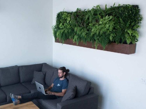Self-Watering Vertical Gardens Make It Easier Than Ever to Keep Plants Thriving at Home