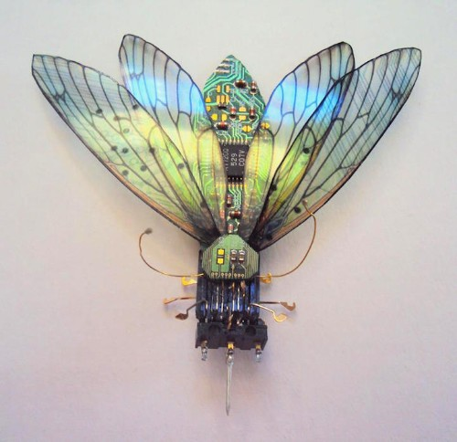 Beautiful Winged Insects Made of Discarded Circuit Boards