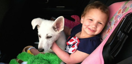 Incredible Little Girl with No Feet Becomes Best Friends with Paw-Less Puppy