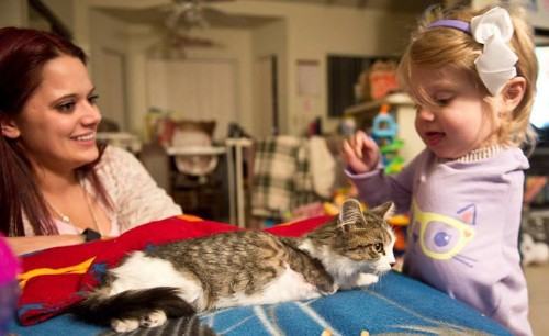 2-Year-Old Amputee Finds Comfort in Her New BFF–A Three-Legged Kitten