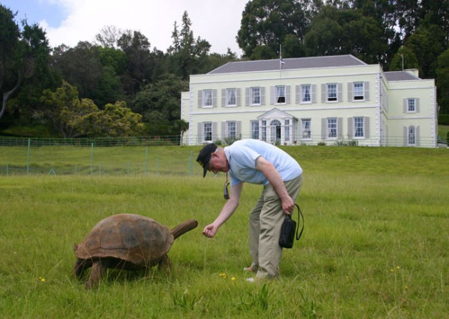Remarkable Giant Tortoise is Still Active at Over 160 Years Old