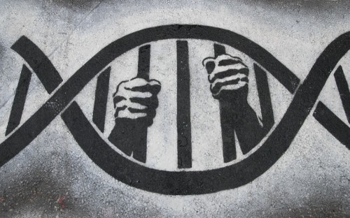 My DNA Made Me Do It? How Behavioral Genetics Is Influencing the Justice System