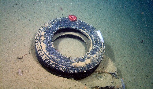 Pictures: Surprising Amount of Trash Found on Deep-Sea Floor