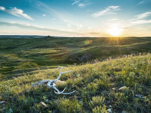 Best of Montana in Spring: Outdoor Recreation