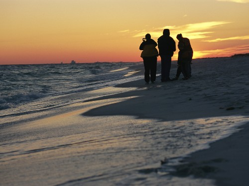 Florida by Land: Take a Naturalist-Guided Beach Walk