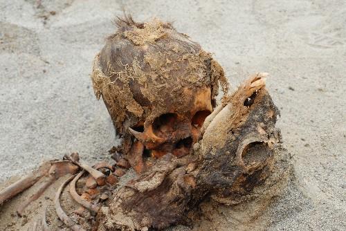 Ancient Mass Child Sacrifice May Be World's Largest