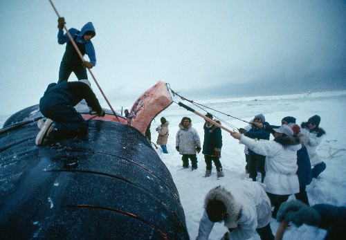 What Obama's Drilling Bans Mean for Alaska and the Arctic