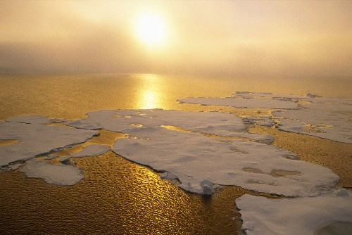 9 countries and the EU protected the Arctic Ocean before the ice melts