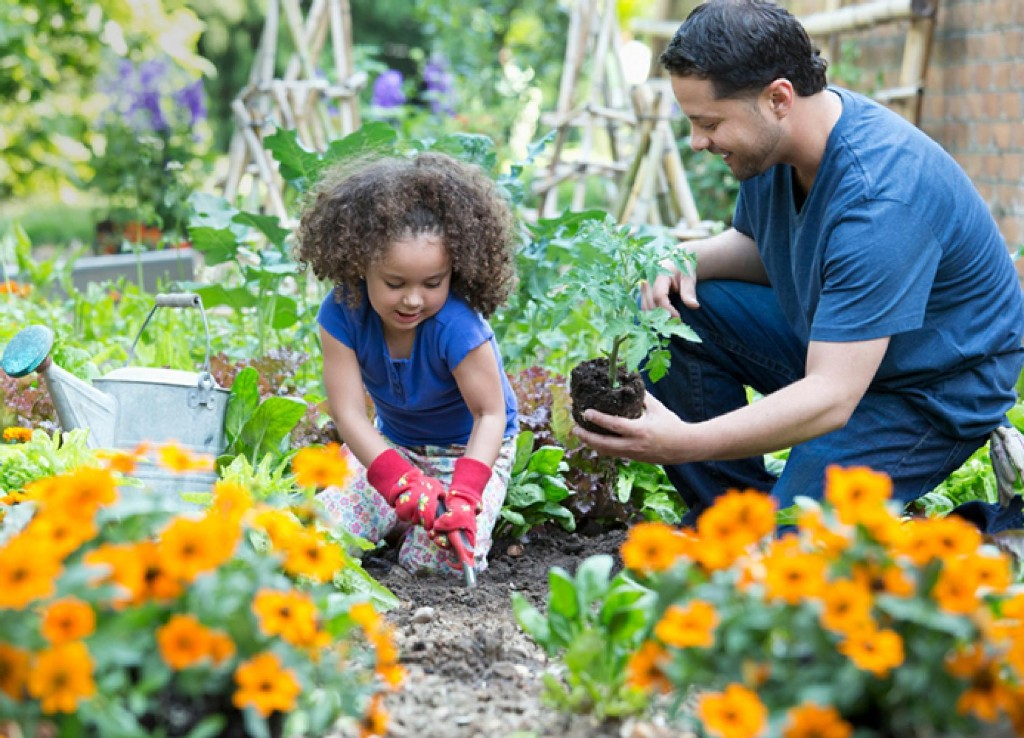 How gardening can teach kids life skills
