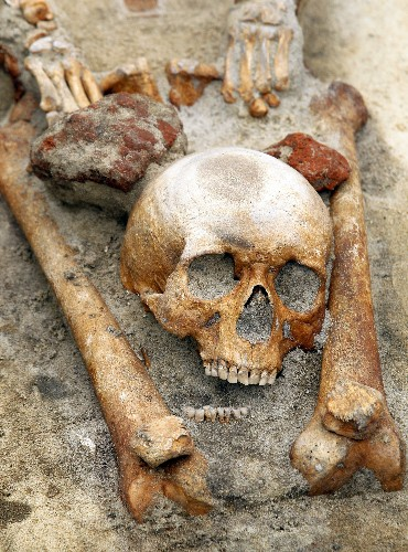 Archaeologists Suspect Vampire Burial; An Undead Primer