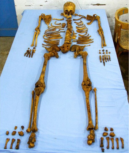 """Pharaoh of """"Lost Dynasty"""" Died Brutal Death, Forensic Study Reveals"""