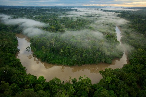 Ecuador Scraps Plan to Block Rain Forest Oil Drilling