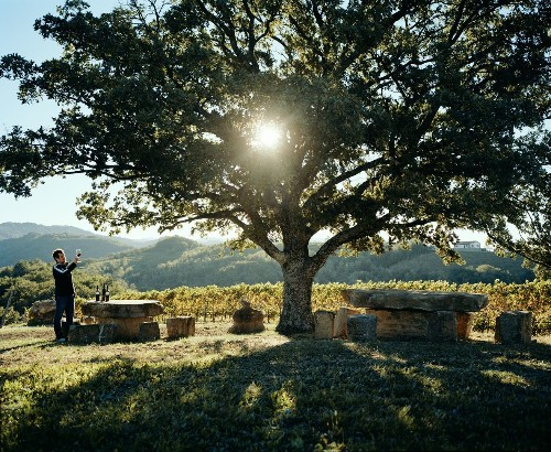 A journey into Slovenia's wine country