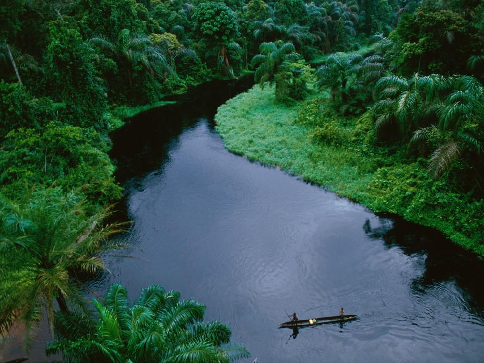Rainforest Lesson - Magazine cover