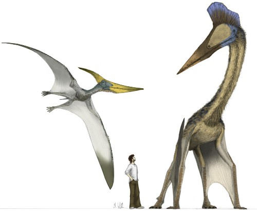 How Pterosaurs Filled Their Lungs