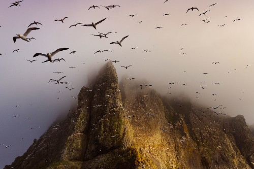 A Long Love Affair With the Scottish Isles, in Pictures