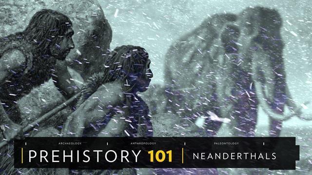 Neanderthals 101
