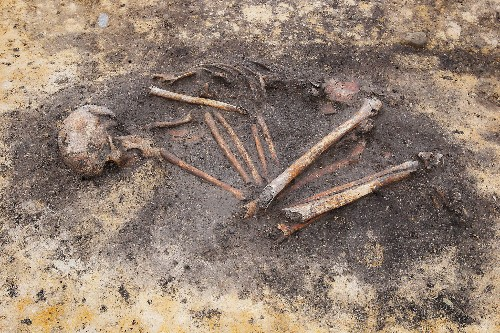 Ancient European homes had 'invisible' social complexities, bones reveal