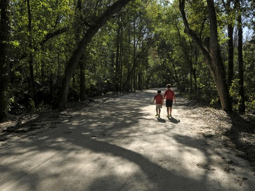 Florida by Land: Hike a Loop Trail