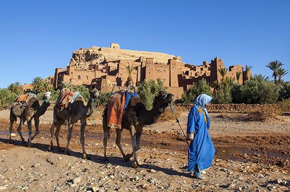 Booker's Grand Tour of Morocco