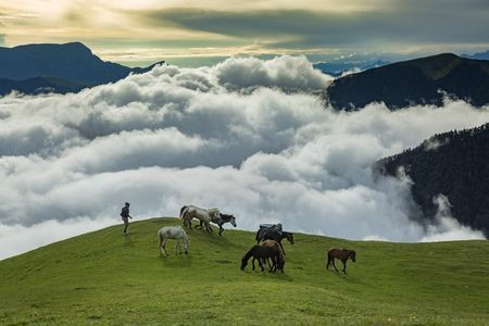 DREAMLAND - BEDINI BUGYAL Photo by kaushal arya -- National Geographic Your Shot