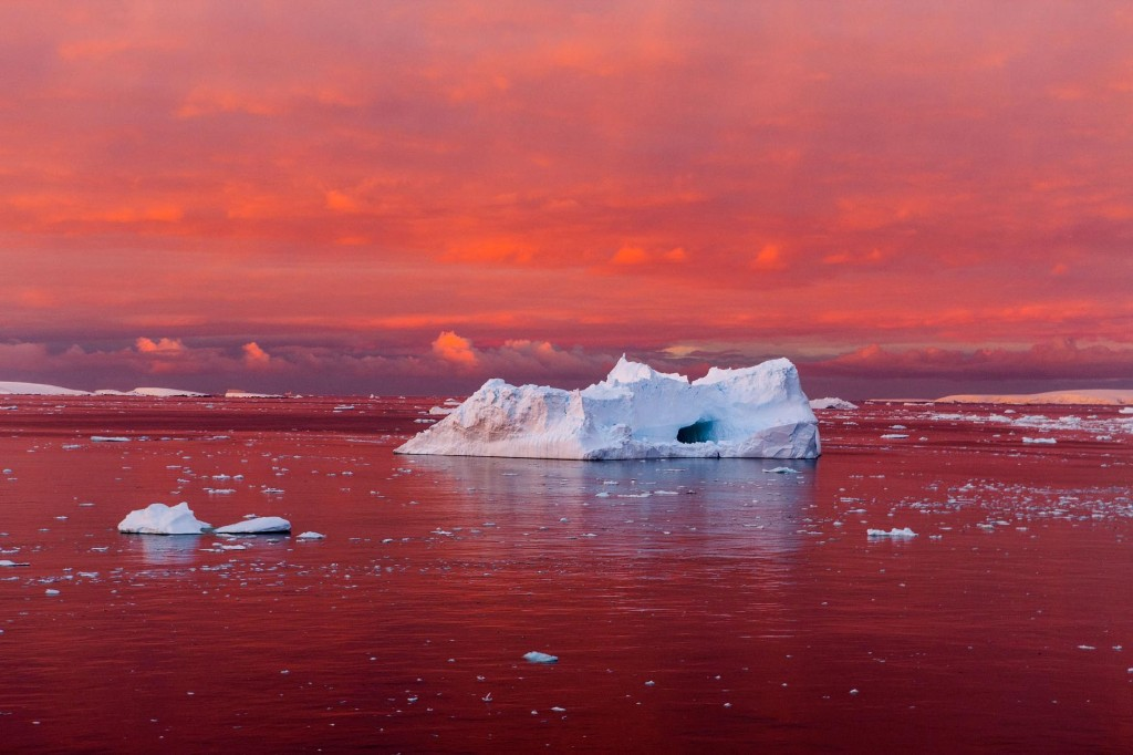 That New Giant Iceberg Is Just the Beginning—Antarctica Is Melting