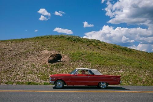 Photographer David Guttenfelder on Yellowstone