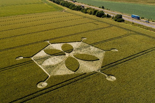 Inside the mystical world of crop circle tourism