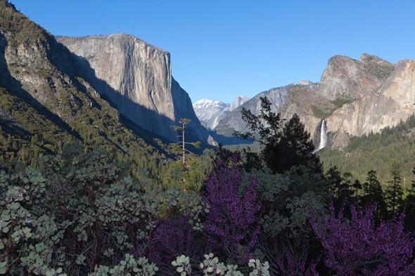YOLO in Yosemite
