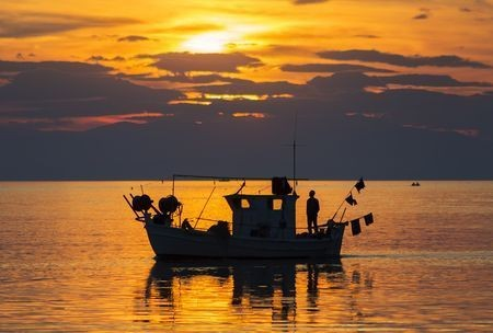 Time For Work Photo by Rik Freeman — National Geographic Your Shot
