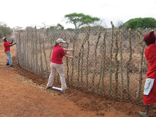 """Living Walls"" Stop Lions From Attacking Livestock in Tanzania"