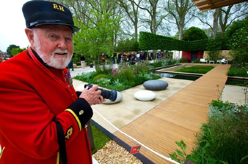 A Peek at the Chelsea Flower Show