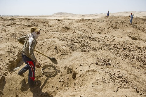 Archaeologists Warn of Pillaged Egypt as U.S. Weighs Tougher Antiquities Laws