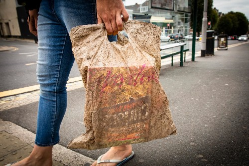Biodegradable shopping bags buried for three years still work