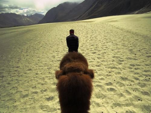 Keep Walking Photo by Ananya Dasgupta — National Geographic Your Shot