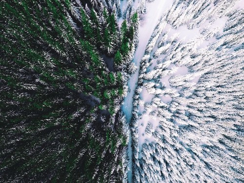The magic of nature Photo by Nazarii Doroshkevych — National Geographic Your Shot