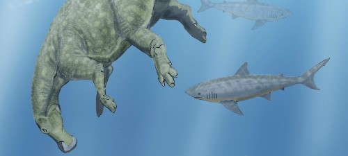 When Sharks Ate Dinosaurs